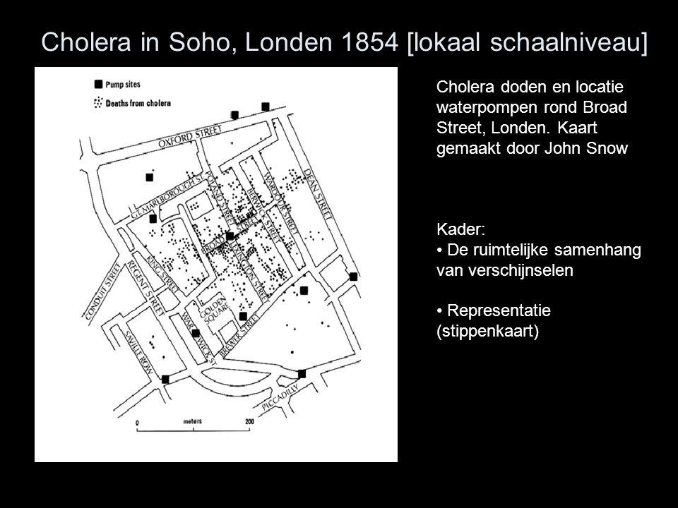 Cholera in Soho, Londen 1854 [lokaal schaalniveau]